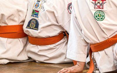 Karate Wołów